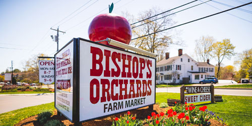 Entrance Sign 500x250 - Bishop's Orchards - Guilford, CT