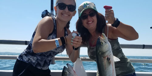 Bluefish Girls 500x250 - Black Hawk Party Boat - Niantic, CT