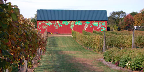 Connecticut wine trail