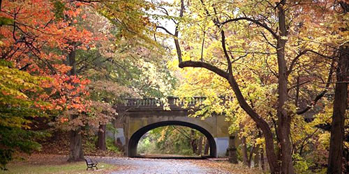 Edgewood-Park-credit-Friends-of-Edgewood-Park