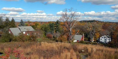 Shoreline and country foliage drives-Greenwich-Audubon