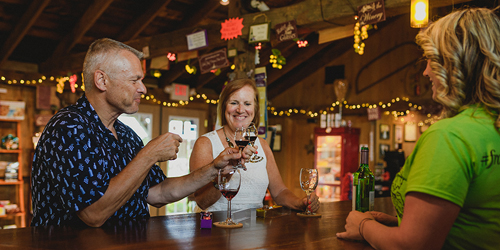 Samples & Cheers - CT Wine Trail