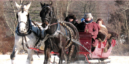 sleigh ride allegra farm in ct