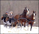 horse drawn sleigh rides in connecticut
