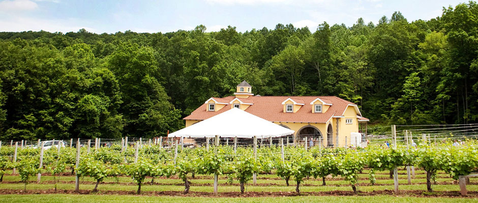 Paradise Hills Vineyard, Wallingford CT